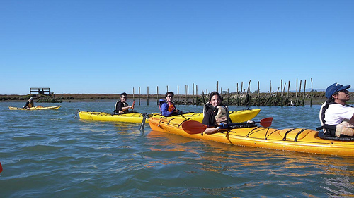 JF's team outing: Kayaking at Moss Landing