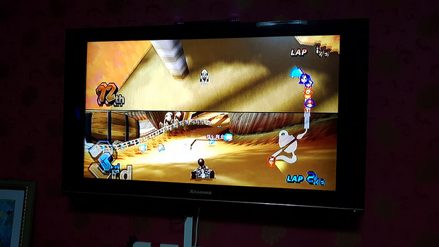 Kifs playing Nintendo wii