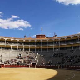 유럽 출장 – Madrid: 투우